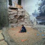 He loved playing in all the exhibits!