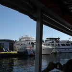 Duck tour on the water on Lake Union