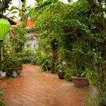 Foto Orchid Garden House