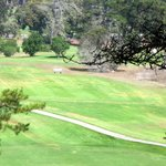 Morro Bay Golf Course, Morro Bay, Ca