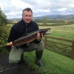 Happy days!  October 2014 - and still more this size in River!