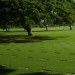 Photo of National Memorial Cemetery of the Pacific