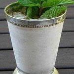 Famous for our 1849 Mint Julep