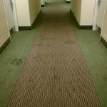 6th floor hallway AFTER it was cleaned