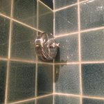 Retractable drying line in shower