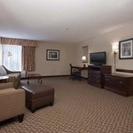 Hampton Inn East Lansing Foto