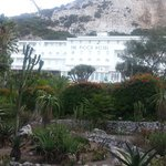 The view of The Rock Hotel from the Botanical Gardens