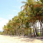 Foto van Grand Mercure Rockford Esplanade Palm Cove