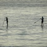 Sea Surf Paddlers in the bay