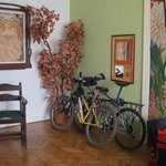 Photo de Ginkgo Hostel