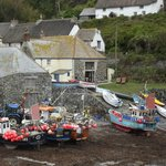 Cadgwith Cove Inn照片