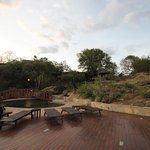 Foto de Lobo Wildlife Lodge