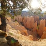 Hoodoos at Bryce Canyon Natinal Park