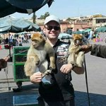 Some monkeys were thrown at me. They wanted €20 x 2 (monkeys) x 2 (people working there) = €80