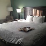Foto van Hampton Inn & Suites Mooresville/Lake Norman