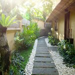 Pathway to the villa