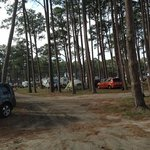 Another view of the campsites.