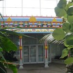 the tropical conservatory & the healer's hut