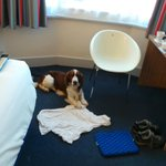 Foto de Travelodge Scarborough St Nicholas Hotel