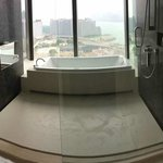 Shower with a view...