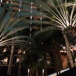 Sheraton Park Hotel at the Anaheim Resort resmi