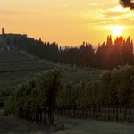 Banfi at sunset