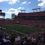 Ravens fans as far as the eye can see