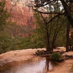 Middle Pool, Emerald Pool Trail