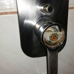 Shower handle missing cover - rusted and gross. 238