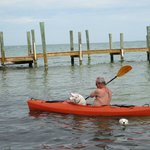 Guest and Their Pets Using our Free Kayaks
