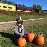 Picking our pumpkins in front of the gorgeous train