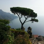 Foto di Sorrento First Choice Private Tours