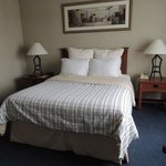 Foto van Four Points by Sheraton St. Catharines Niagara Suites