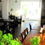 Inside view with taverna cat