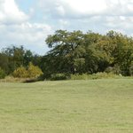 Hill Country at the LBJ Ranch