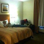 Candlewood Suites Hot Springs resmi