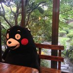 Kumamon sitting in the lobby overlooking the garden