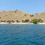 Zdjęcie Komodo Resort & Diving Club