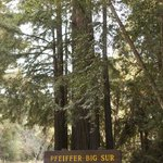 Phieffer State Park is just up the road from the Inn!