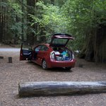 Prius camping! PRV camping...the new fad!