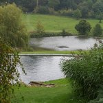Relaxing Chartwell landscape