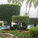 Grounds at resort