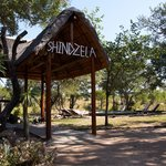 Shindzela Tented Safari Camp Foto