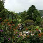 Smokehouse Hotel Cameron Highlands Foto