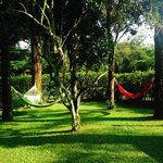 Garden with hammocks
