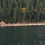 Ross Lake Resort의 사진