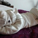 White cat created towel art by MANJIT MANGALAM