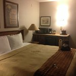 Stoney Creek Hotel and Conference Center - Des Moines resmi
