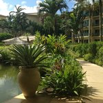 Outrigger Waipouli Beach Resort and Spa Foto