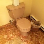 Brown toilet